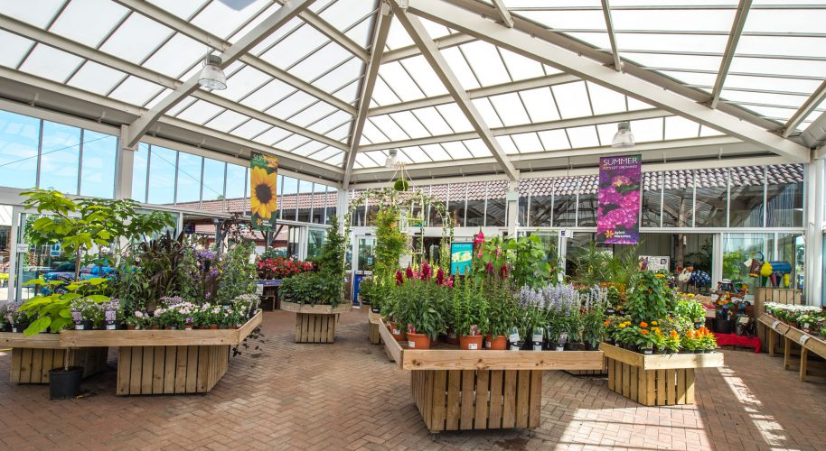 Aylett Nurseries Photography | Striking Places