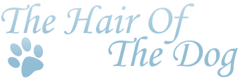 Linda Stone | Owner | The Hair of the Dog